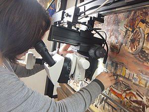 絵画修復用実体顕微鏡の導入